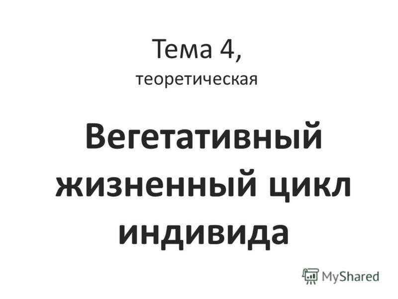 Тема 4, теоретическая Вегетативный жизненный цикл индивида