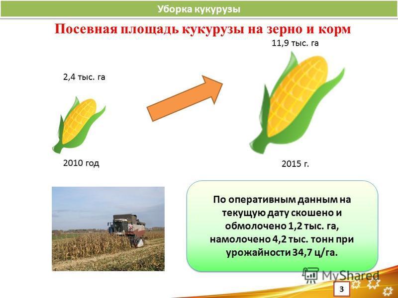 3 Уборка кукурузы По оперативным данным на текущую дату скошено и обмолочено 1,2 тыс. га, намолочено 4,2 тыс. тонн при урожайности 34,7 ц/га. 2010 год 2015 г. 2,4 тыс. га 11,9 тыс. га Посевная площадь кукурузы на зерно и корм