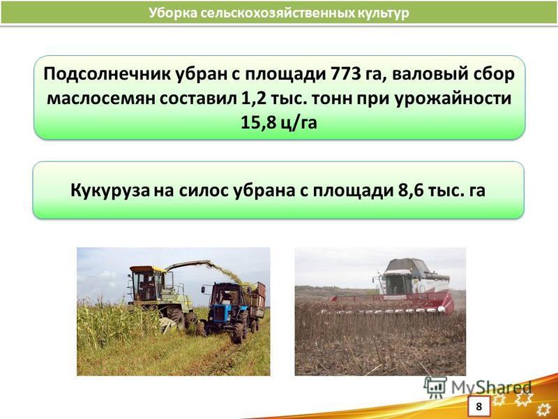 Уборка сельскохозяйственных культур 8 Подсолнечник убран с площади 773 га, валовый сбор маслосемян составил 1,2 тыс. тонн при урожайности 15,8 ц/га Кукуруза на силос убрана с площади 8,6 тыс. га