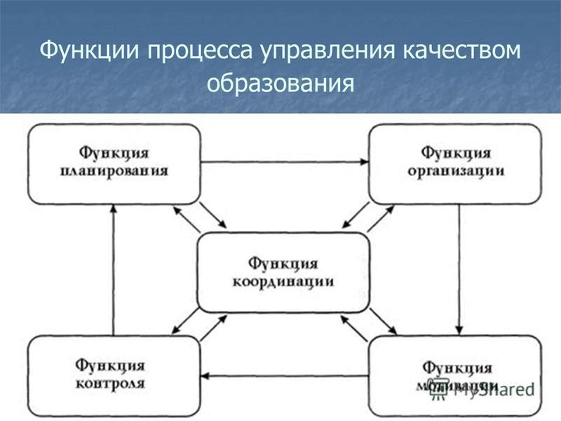 Функции процесса управления качеством образования