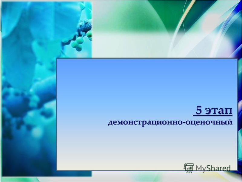 5 этап 5 этапдемонстрационно-оценочный демонстрационно-оценочный