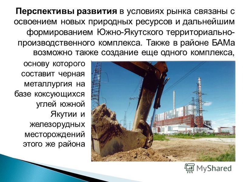 Перспективы развития в условиях рынка связаны с освоением новых природных ресурсов и дальнейшим формированием Южно-Якутского территориально- производственного комплекса. Также в районе БАМа возможно также создание еще одного комплекса, основу которог