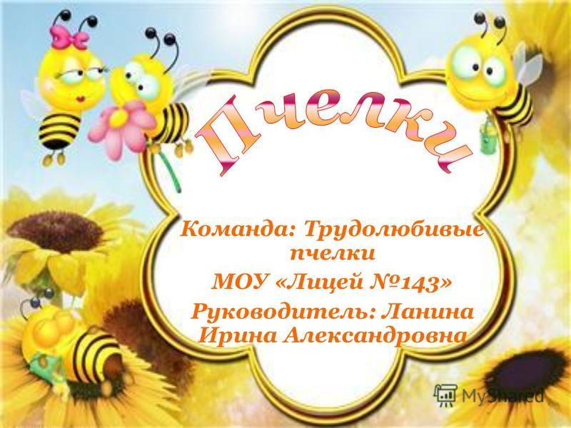 Команда: Трудолюбивые пчелки МОУ «Лицей 143» Руководитель: Ланина Ирина Александровна