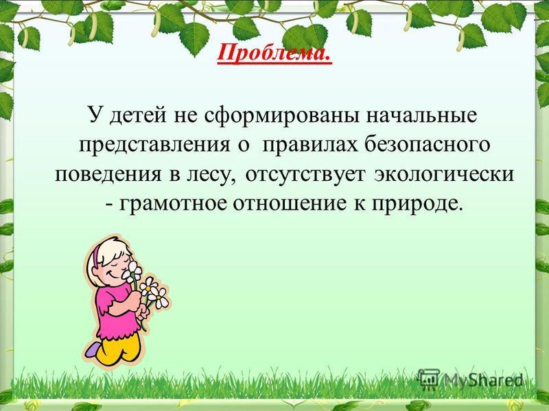 Проблема. У детей не сформированы начальные представления о правилах безопасного поведения в лесу, отсутствует экологически - грамотное отношение к природе.