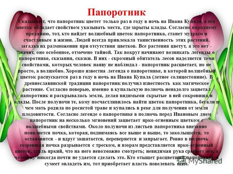 Папоротник Сказывают, что папоротник цветет только раз в году в ночь на Ивана Купала, а его цветок обладает свойством указывать места, где зарыты клады. Согласно народному преданию, тот, кто найдет волшебный цветок папоротника, станет мудрым и счастл