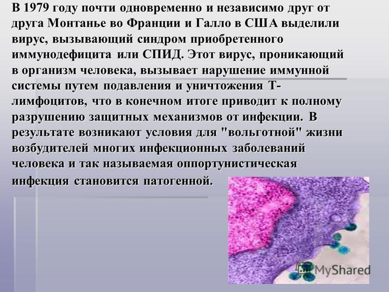 В 1979 году почти одновременно и независимо друг от друга Монтанье во Франции и Галло в США выделили вирус, вызывающий синдром приобретенного иммунодефицита или СПИД. Этот вирус, проникающий в организм человека, вызывает нарушение иммунной системы пу