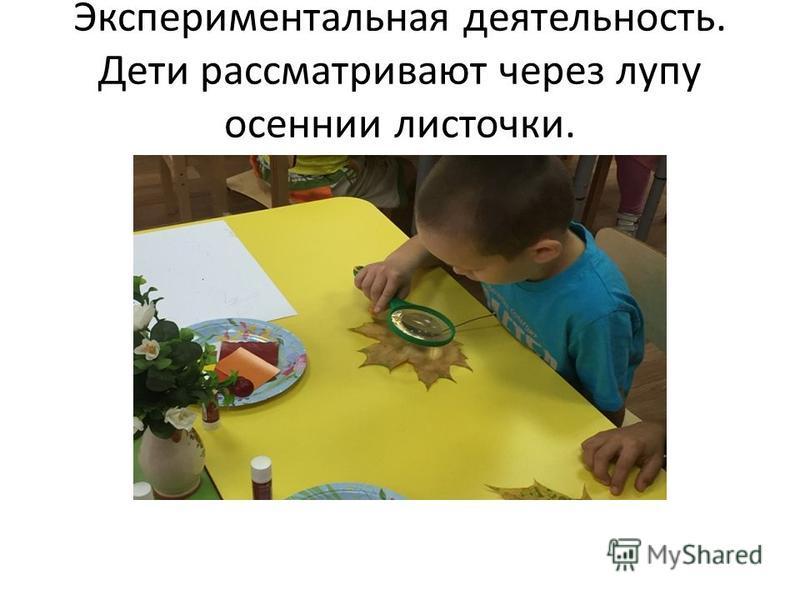 Экспериментальная деятельность. Дети рассматривают через лупу осенние листочки.