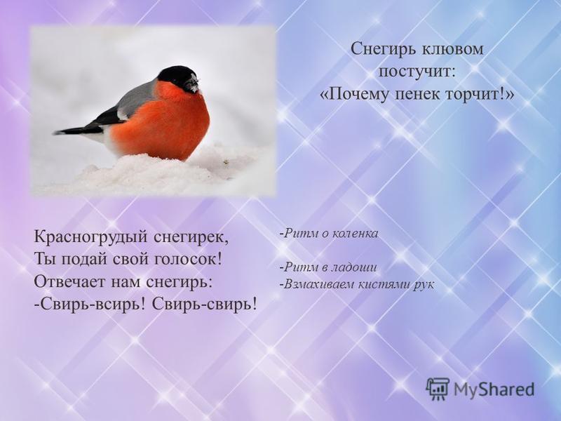 Снегирь клювом постучит: «Почему пенек торчит!» Красногрудый снегирек, Ты подай свой голосок! Отвечает нам снегирь: -Свирь-свирь! Свирь-свирь! -Ритм о коленка -Ритм в ладоши -Взмахиваем кистями рук
