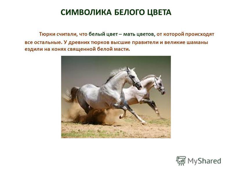 СИМВОЛИКА БЕЛОГО ЦВЕТА Тюрки считали, что белый цвет – мать цветов, от которой происходят все остальные. У древних тюрков высшие правители и великие шаманы ездили на конях священной белой масти.