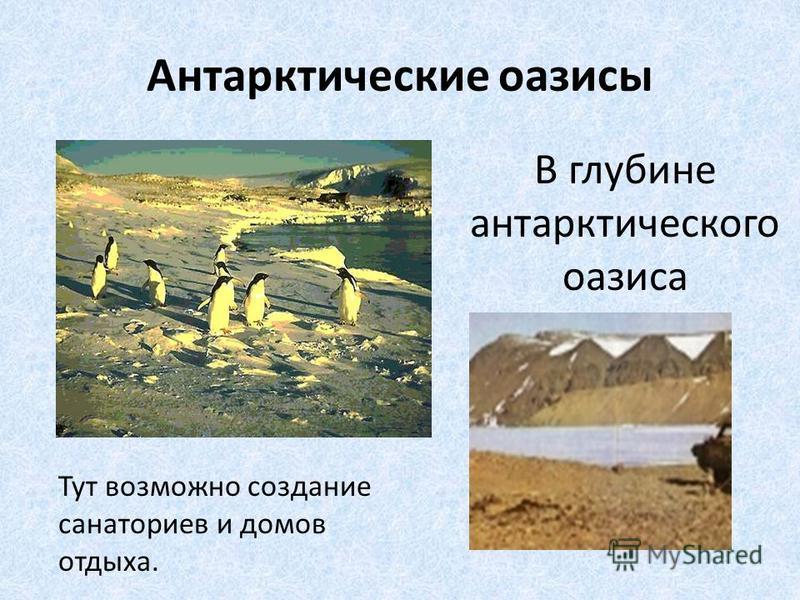 Антарктические оазисы В глубине антарктического оазиса Тут возможно создание санаториев и домов отдыха.