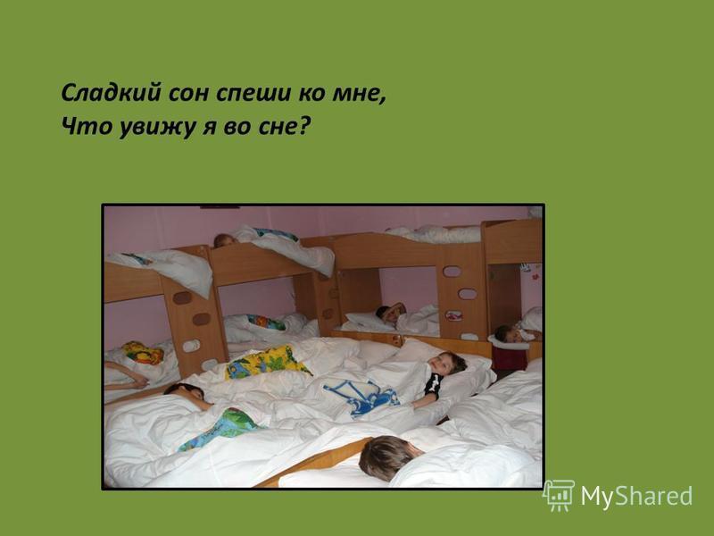 Сладкий сон спеши ко мне, Что увижу я во сне?