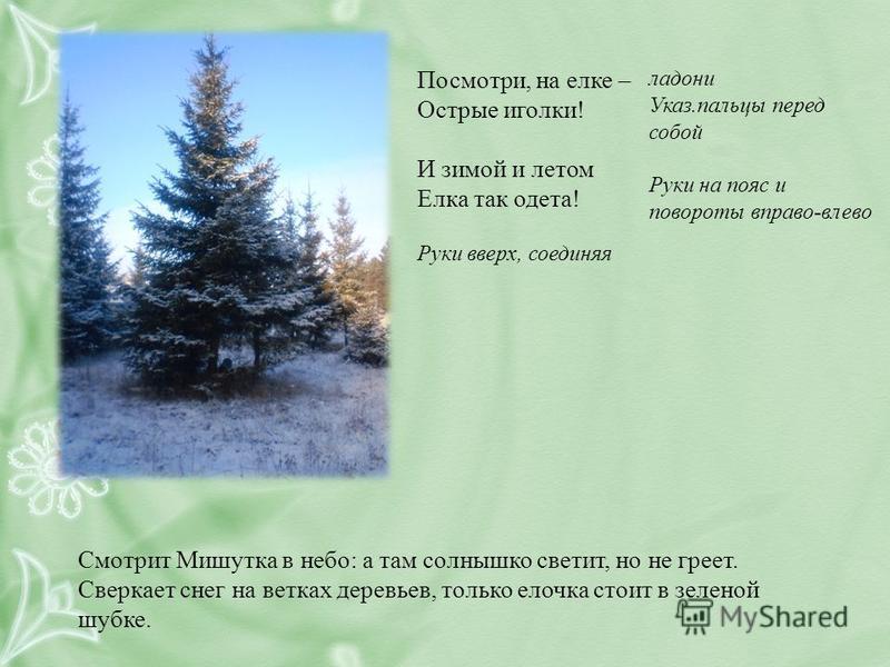 Посмотри, на елке – Острые иголки! И зимой и летом Елка так одета! Руки вверх, соединяя ладони Указ.пальцы перед собой Руки на пояс и повороты вправо-влево Смотрит Мишутка в небо: а там солнышко светит, но не греет. Сверкает снег на ветках деревьев,