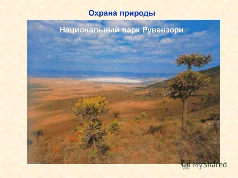Национальный парк «Ворота Арктики» Гипсовые дюны в национальном парке «Белые пески» Национальный парк Рувензори Охрана природы