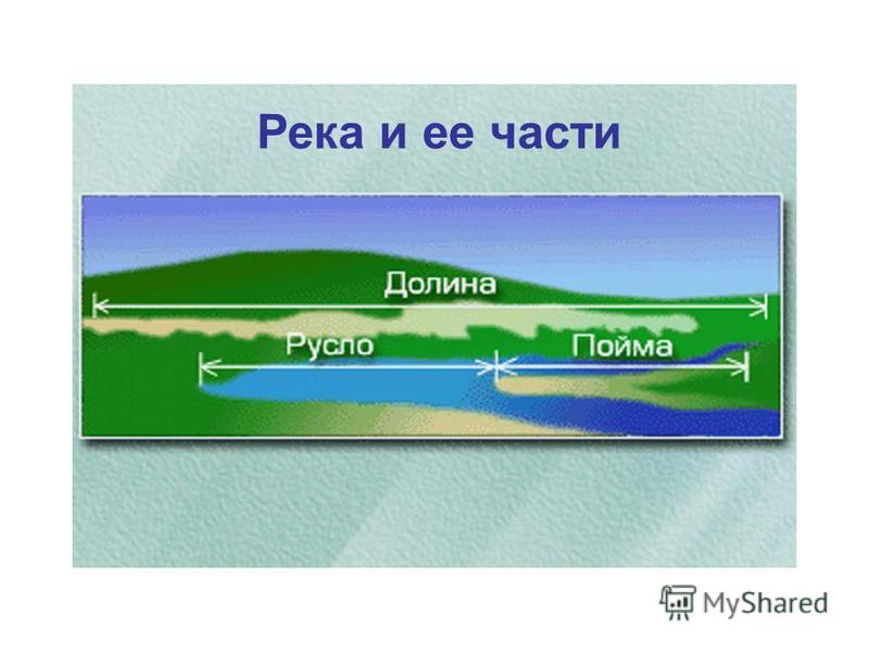 Река и ее части