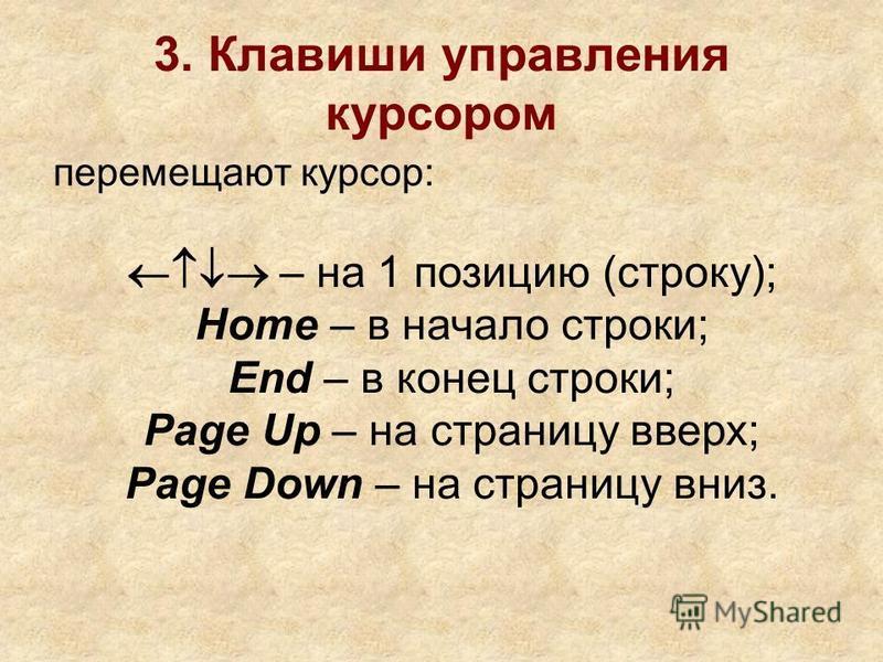 3. Клавиши управления курсором перемещают курсор: – на 1 позицию (строку); Home – в начало строки; End – в конец строки; Page Up – на страницу вверх; Page Down – на страницу вниз.
