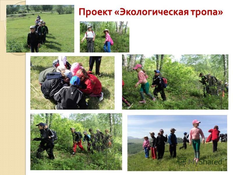 Проект « Экологическая тропа »