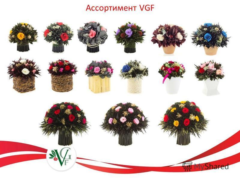 Ассортимент VGF