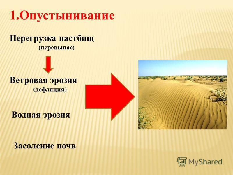 1. Опустынивание Перегрузка пастбищ ( перевыпас ) Ветровая эрозия (дефляция) Водная эрозия Засоление почв