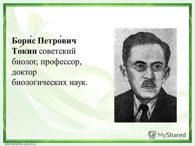 Бори́с Петро́вич То́кин советский биолог, профессор, доктор биологических наук.