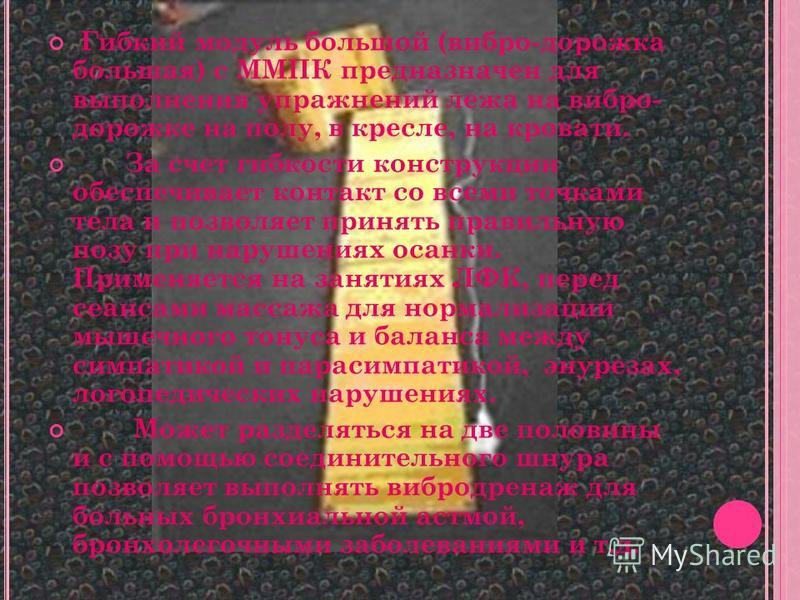 Г ИБКИЙ МОДУЛЬ БОЛЬШОЙ ( ВИБРОДОРОЖКА БОЛЬШАЯ ) С ММП И БКП