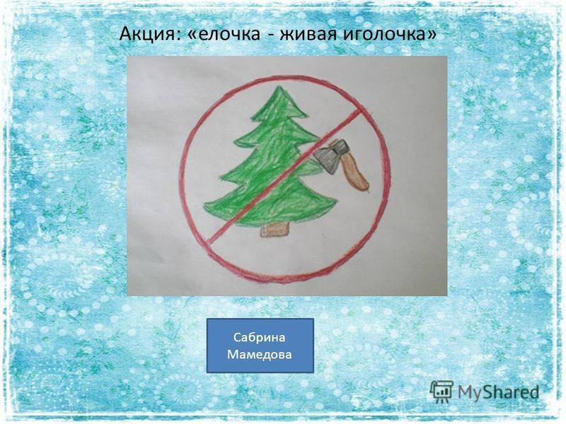 Акция: «елочка - живая иголочка» Сабрина Мамедова