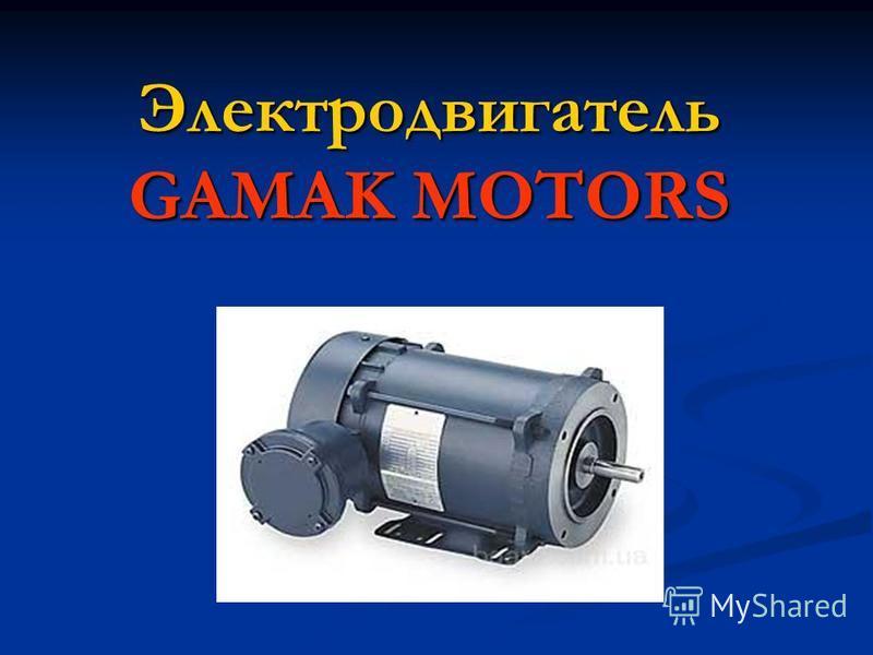 Электродвигатель GAMAK MOTORS