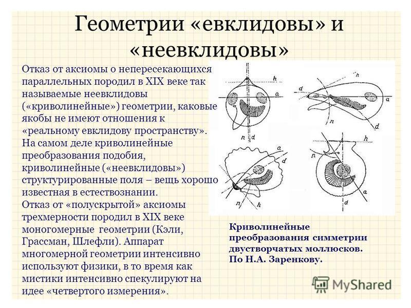 Геометрии «евклидовы» и «неевклидовы» Отказ от аксиомы о непересекающихся параллельных породил в XIX веке так называемые неевклидовы («криволинейные») геометрии, каковые якобы не имеют отношения к «реальному евклидову пространству». На самом деле кри