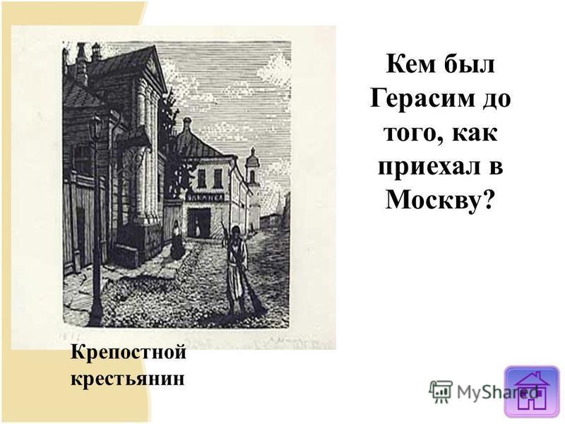 Кем был Герасим до того, как приехал в Москву? Крепостной крестьянин