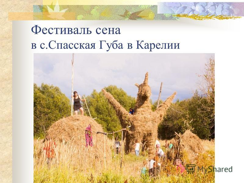 Фестиваль сена в с.Спасская Губа в Карелии