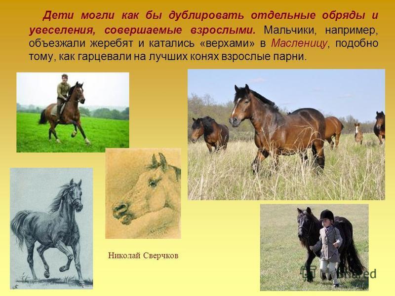 Николай Сверчков Дети могли как бы дублировать отдельные обряды и увеселения, совершаемые взрослыми. Мальчики, например, объезжали жеребят и катались «верхами» в Масленицу, подобно тому, как гарцевали на лучших конях взрослые парни.