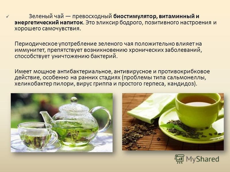 Зеленый чай превосходный биостимулятор, витаминный и энергетический напиток. Это эликсир бодрого, позитивного настроения и хорошего самочувствия. Периодическое употребление зеленого чая положительно влияет на иммунитет, препятствует возникновению хро