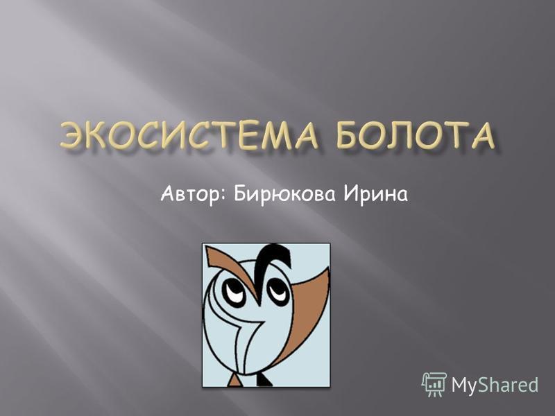 Автор: Бирюкова Ирина