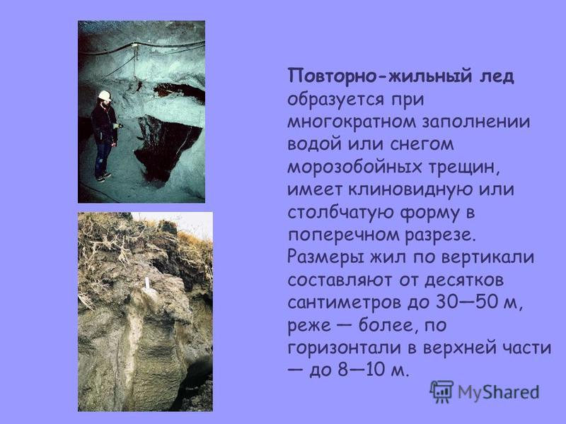 Повторно-жильный лед образуется при многократном заполнении водой или снегом морозобойных трещин, имеет клиновидную или столбчатую форму в поперечном разрезе. Размеры жил по вертикали составляют от десятков сантиметров до 3050 м, реже более, по гориз