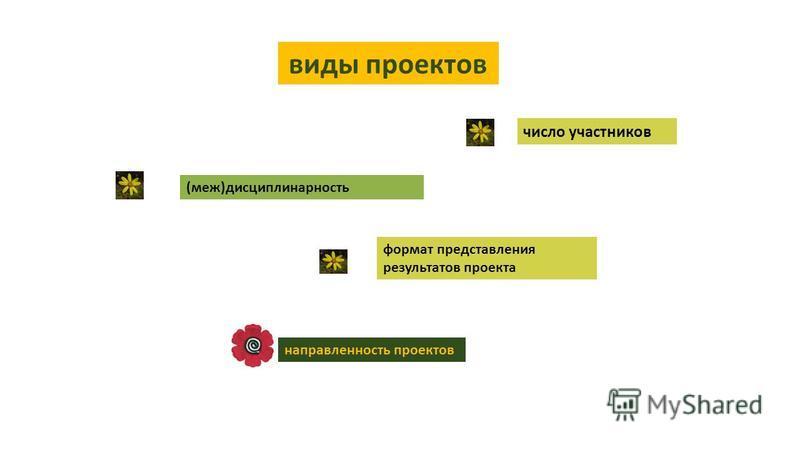 виды проектов число участников (меж)дисциплинарность формат представления результатов проекта направленность проектов