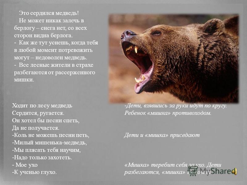 Это сердился медведь! Не может никак залечь в берлогу – снега нет, со всех сторон видна берлога. -Как же тут уснешь, когда тебя в любой момент потревожить могут – недоволен медведь. -Все лесные жители в страхе разбегаются от рассерженного мишки. Ходи