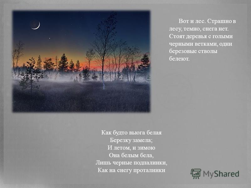 Вот и лес. Страшно в лесу, темно, снега нет. Стоят деревья с голыми черными ветками, одни березовые стволы белеют. Как будто вьюга белая Березку замела; И летом, и зимою Она белым бела, Лишь черные подпалинки, Как на снегу проталинки