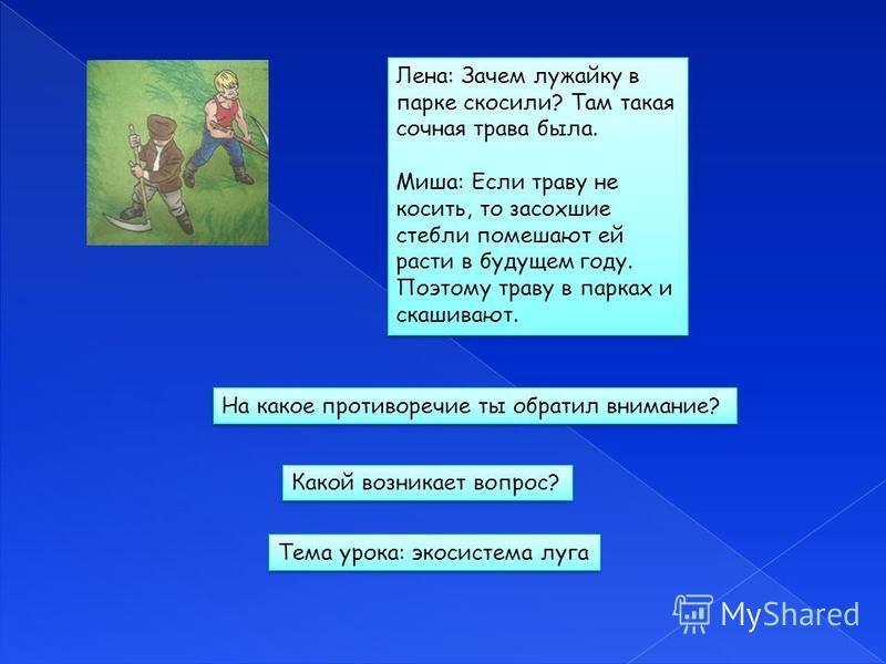 Лена: Зачем лужайку в парке скосили? Там такая сочная трава была. Миша: Если траву не косить, то засохшие стебли помешают ей расти в будущем году. Поэтому траву в парках и скашивают. Лена: Зачем лужайку в парке скосили? Там такая сочная трава была. М