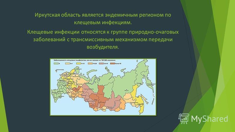 Иркутская область является эндемичным регионом по клещевым инфекциям. Клещевые инфекции относятся к группе природно-очаговых заболеваний с трансмиссивным механизмом передачи возбудителя.