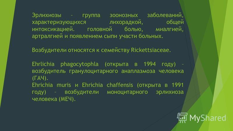 Эрлихиозы – группа зоонозных заболеваний, характеризующихся лихорадкой, общей интоксикацией. головной болью, миалгией, артралгией и появлением сыпи участи больных. Возбудители относятся к семейству Rickettsiaceae. Ehrlichia phagocytophla (открыта в 1