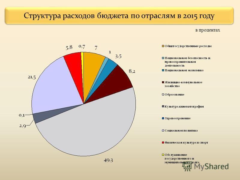 Структура расходов бюджета по отраслям в 2015 году в процентах