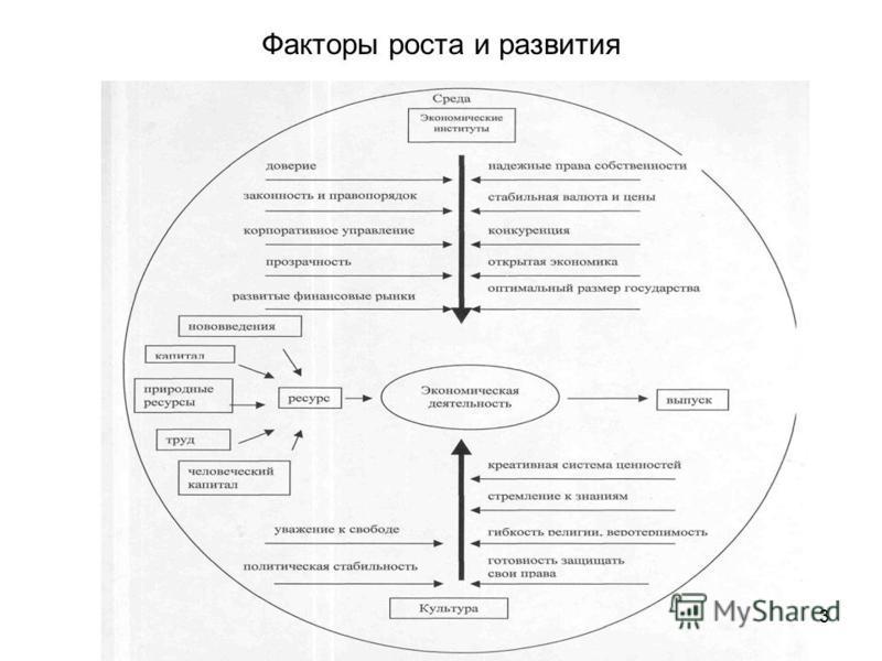 3 Факторы роста и развития