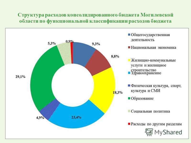 Структура расходов консолидированного бюджета Могилевской области по функциональной классификации расходов бюджета