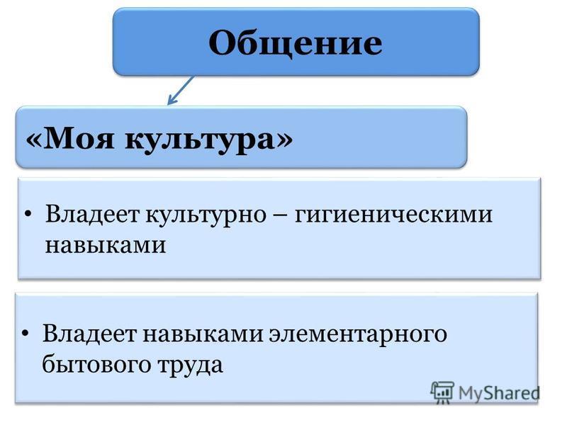 «Моя культура» Владеет культурно – гигиеническими навыками Владеет навыками элементарного бытового труда Общение
