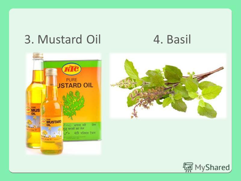 3. Mustard Oil4. Basil