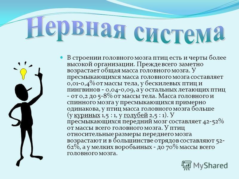 Ашанова М. БН-32