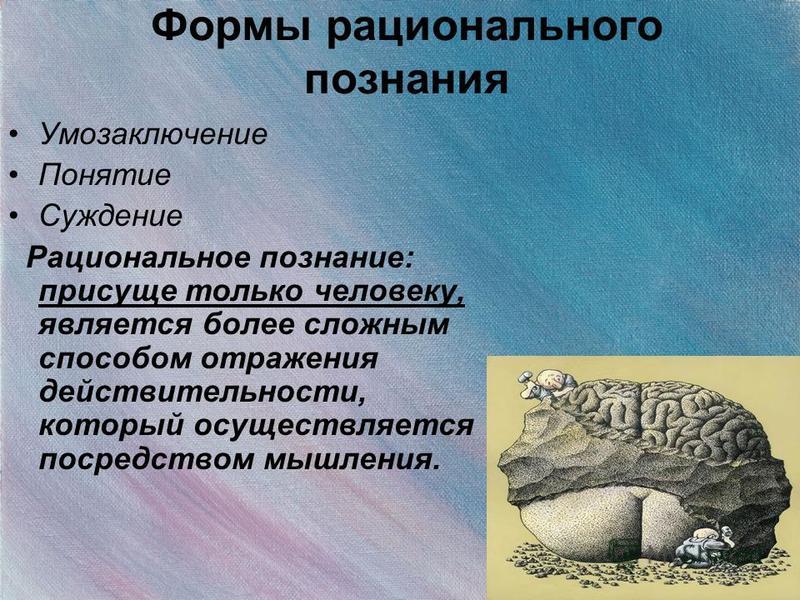 Формы рационального познания Умозаключение Понятие Суждение Рациональное познание: присуще только человеку, является более сложным способом отражения действительности, который осуществляется посредством мышления.