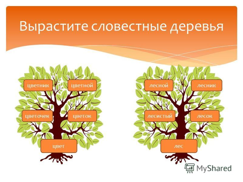 Вырастите словестные деревья цвет лес цветник цветной цветок цветочек лесник лесоклесистый лесной