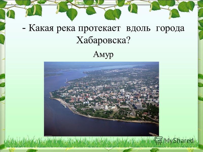 - Какая река протекает вдоль города Хабаровска? Амур