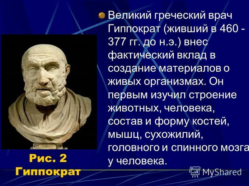 Рис. 2 Гиппократ Великий греческий врач Гиппократ (живший в 460 - 377 гг. до н.э.) внес фактический вклад в создание материалов о живых организмах. Он первым изучил строение животных, человека, состав и форму костей, мышц, сухожилий, головного и спин