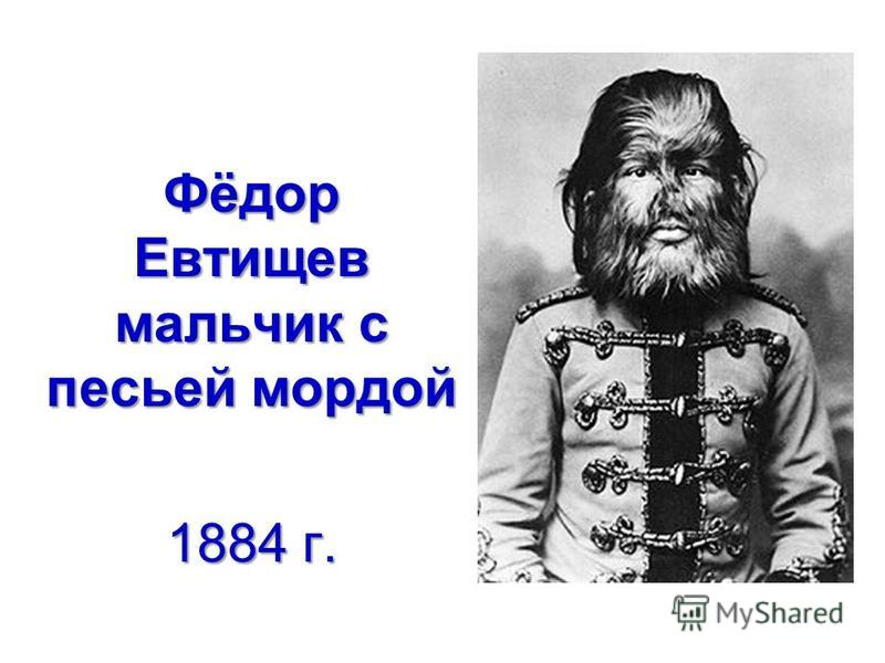 Фёдор Евтищев мальчик с песьей мордой 1884 г.